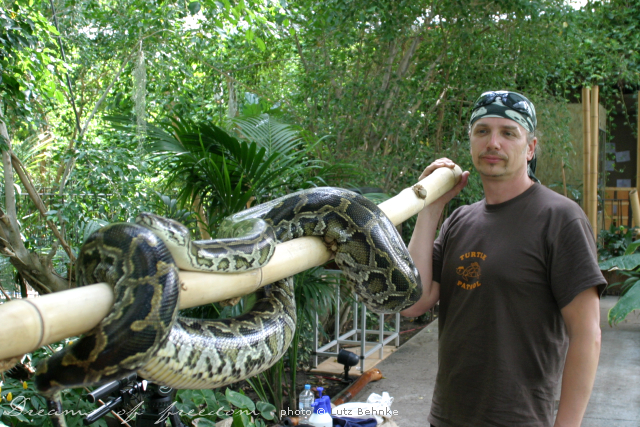 Lutz - helping to carry a python